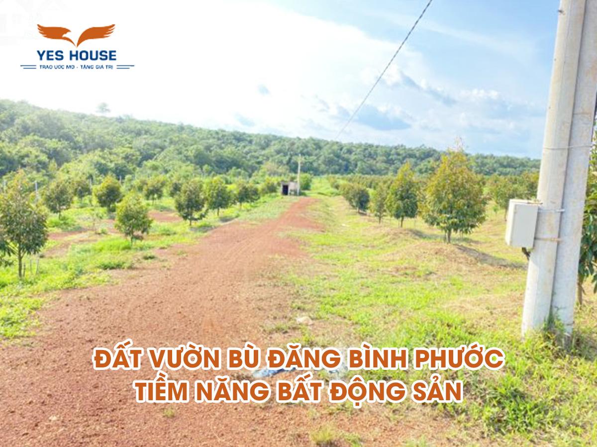 đất vườn Bù Đăng Bình Phước