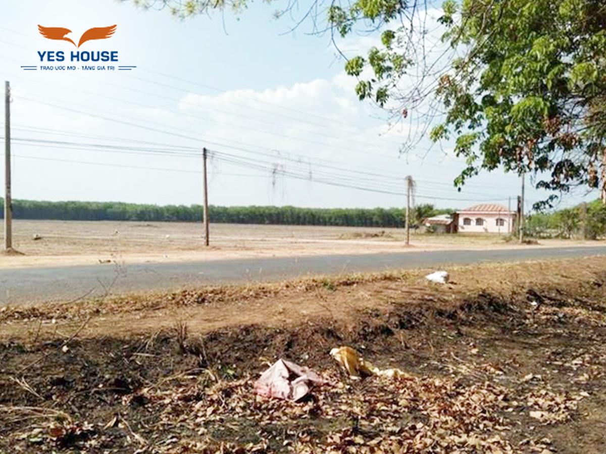 Những lưu ý khi tìm mua đất vườn Bù Đăng, Bình Phước