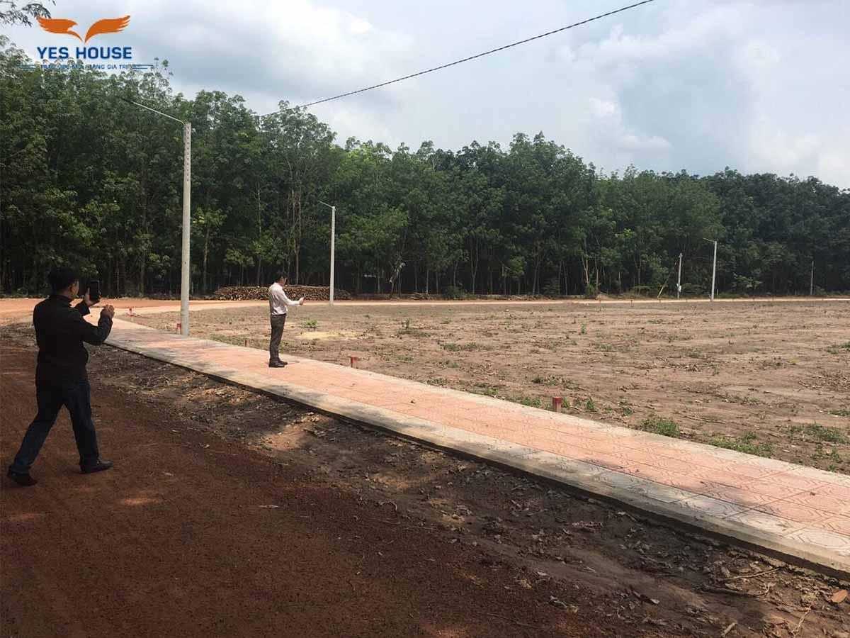 iềm năng Bất động sản tại tỉnh Bình Phước nói chung