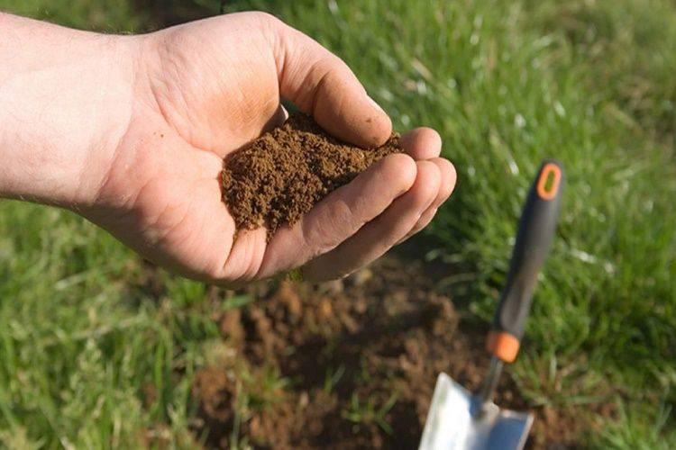 Nắm rõ quy định, thủ tục cải tạo đất nông nghiệp và mẫu đơn xin - yeshouse