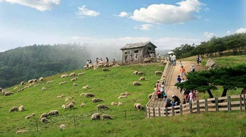 Quyền của người sử dụng đất kinh tế trang trại - yeshouse