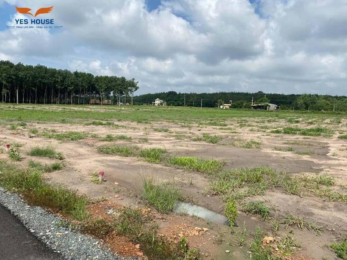Sở hữu vị trí đắc địa - thuận lợi trao đổi mua đất nền Chơn Thành